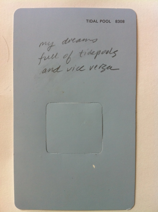 A paint chip with a haiku about a tidepool written on it.