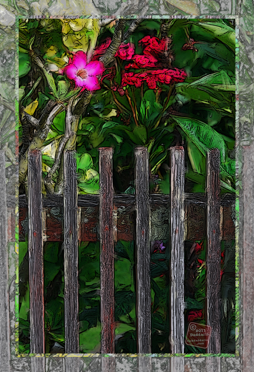 Flowers behind a fence