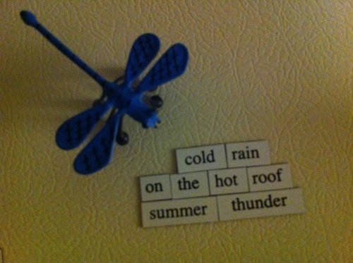cold rain / on the hot roof / summer thunder